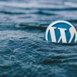 WordPress Logo floating in water